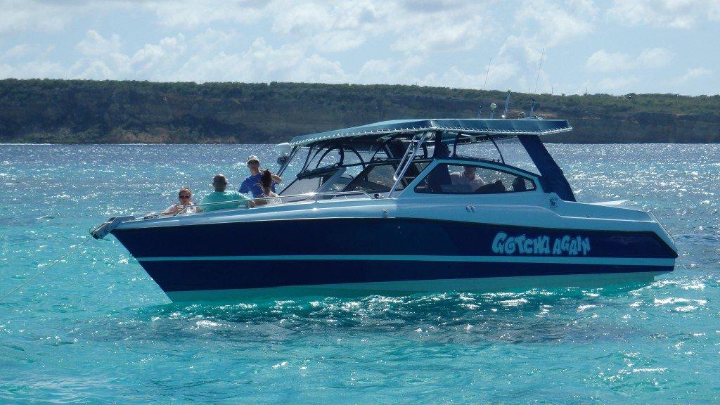 Gotcha Garfield Sea Tours